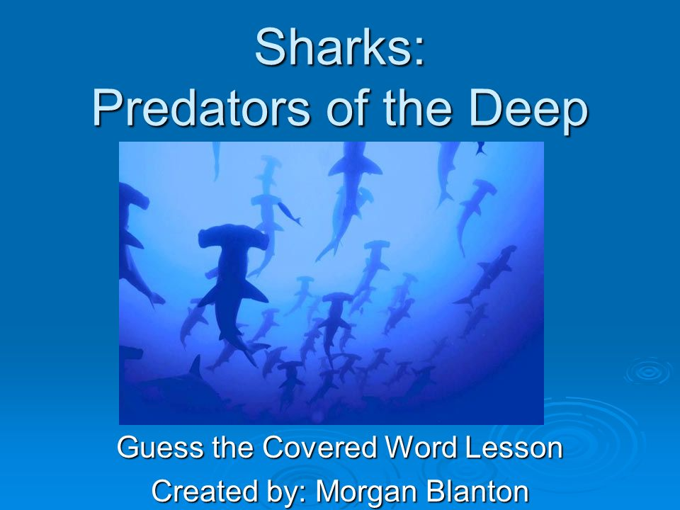 Sharks: Predators of the Deep Guess the Covered Word Lesson Created by: Morgan Blanton
