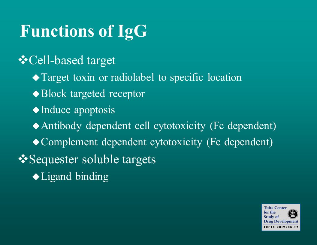 Functions of IgG Cell-based target Target toxin or radiolabel to specific location Block targeted receptor Induce apoptosis Antibody dependent cell cy