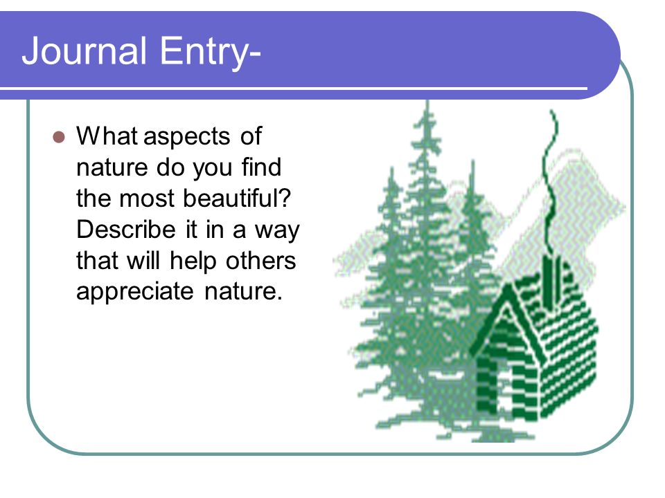 Journal Entry- What aspects of nature do you find the most beautiful? Describe it in a way that will help others appreciate nature.