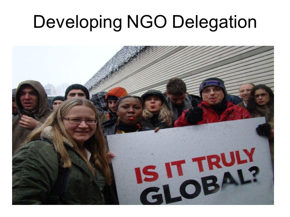 Developing NGO Delegation