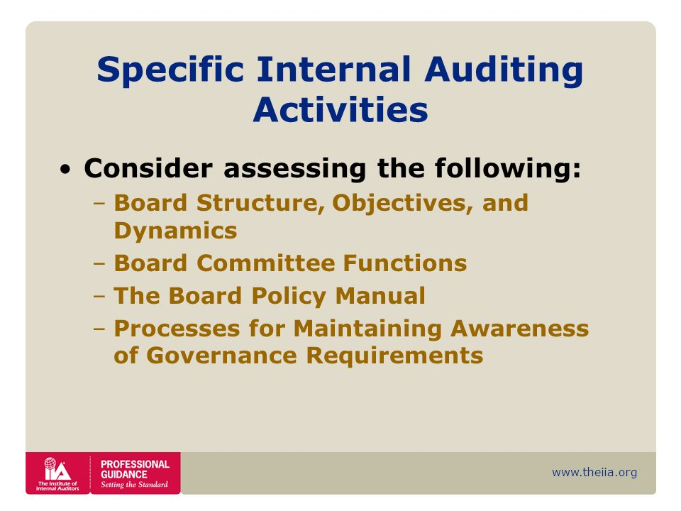 www.theiia.org Specific Internal Auditing Activities Consider assessing the following: –Board Structure, Objectives, and Dynamics –Board Committee Fun