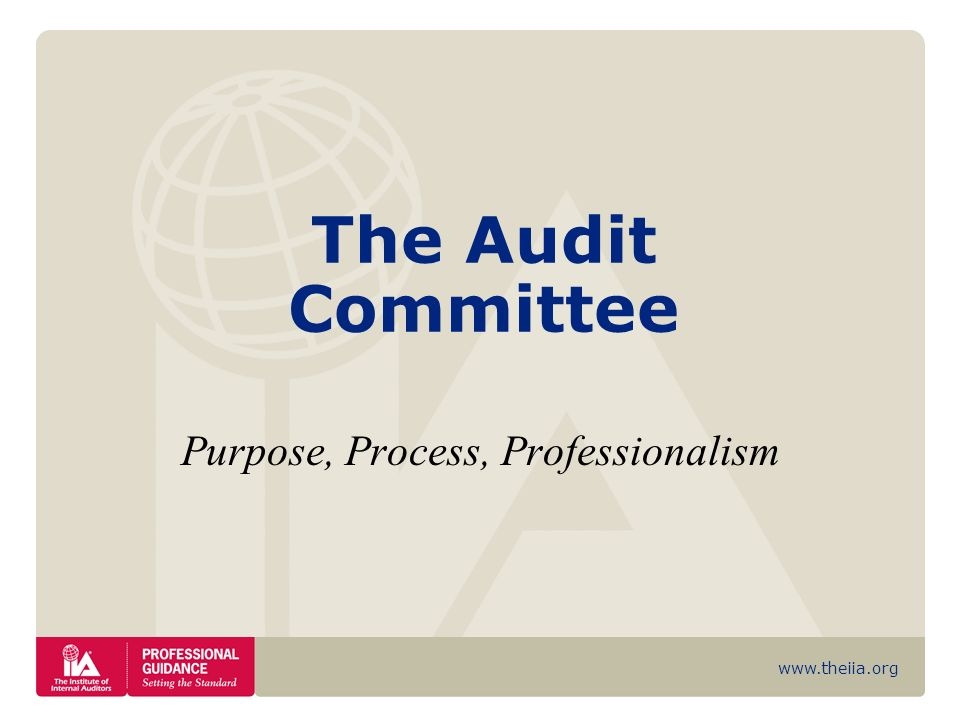 www.theiia.org The Audit Committee Purpose, Process, Professionalism