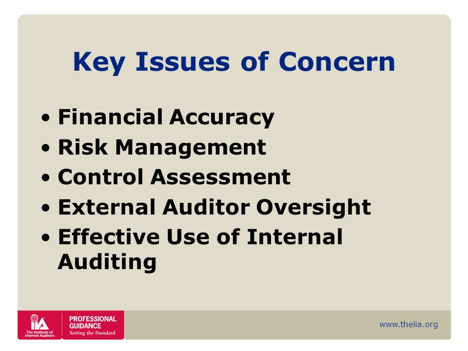 www.theiia.org Key Issues of Concern Financial Accuracy Risk Management Control Assessment External Auditor Oversight Effective Use of Internal Auditi