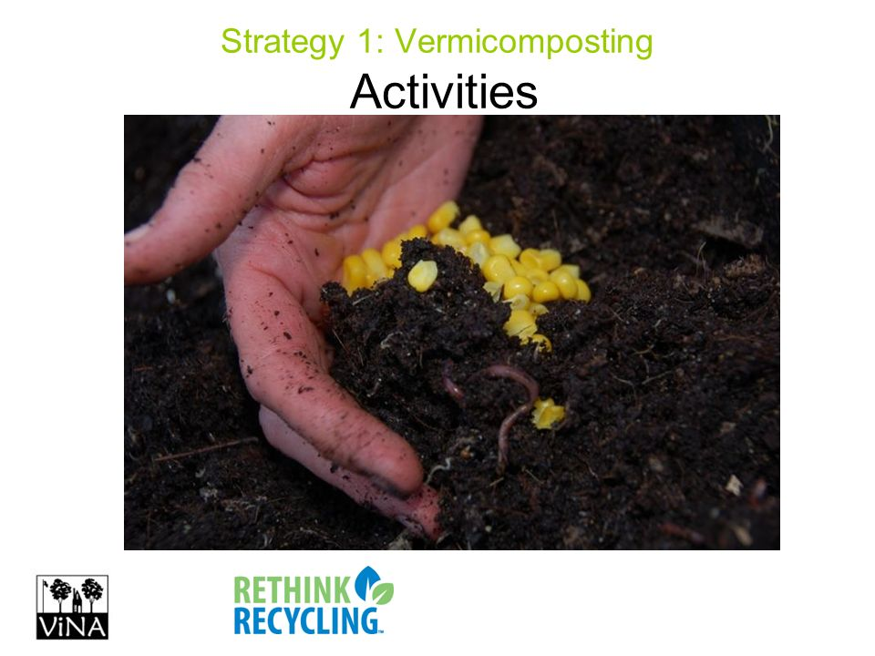 Strategy 1: Vermicomposting Activities