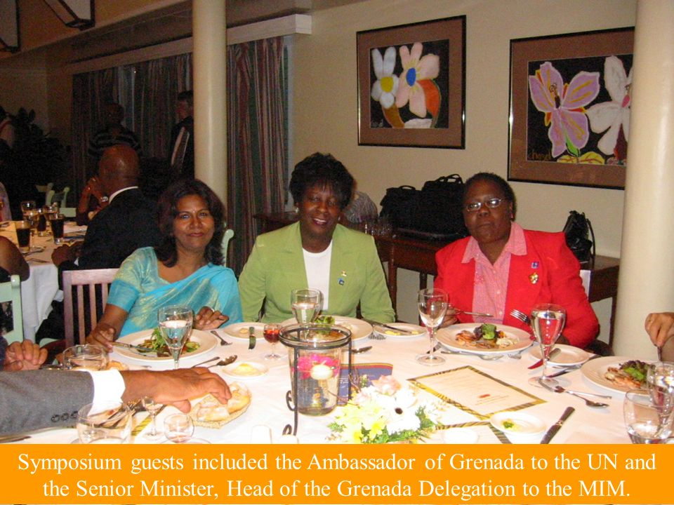 Symposium guests included the Ambassador of Grenada to the UN and the Senior Minister, Head of the Grenada Delegation to the MIM.
