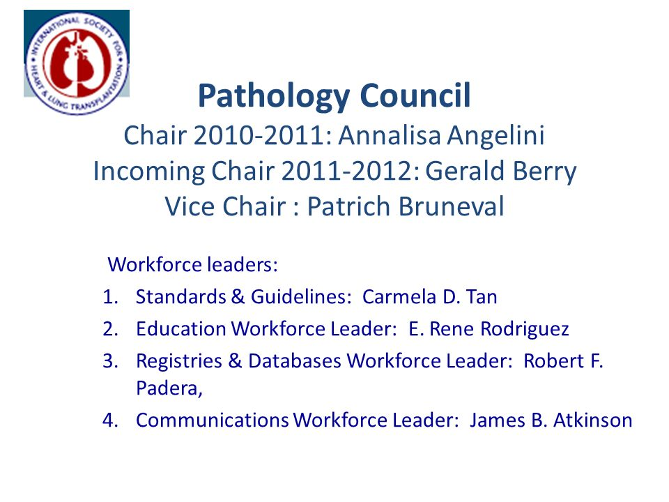 Pathology Council Chair 2010-2011: Annalisa Angelini Incoming Chair 2011-2012: Gerald Berry Vice Chair : Patrich Bruneval Workforce leaders: 1.Standards & Guidelines: Carmela D.