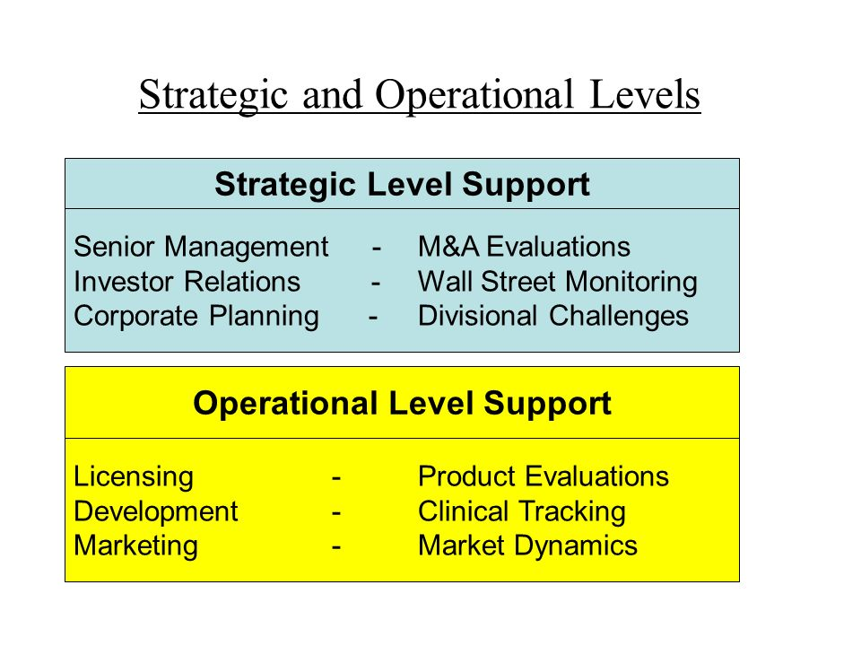 Strategic and Operational Levels Senior Management -M&A Evaluations Investor Relations -Wall Street Monitoring Corporate Planning -Divisional Challeng
