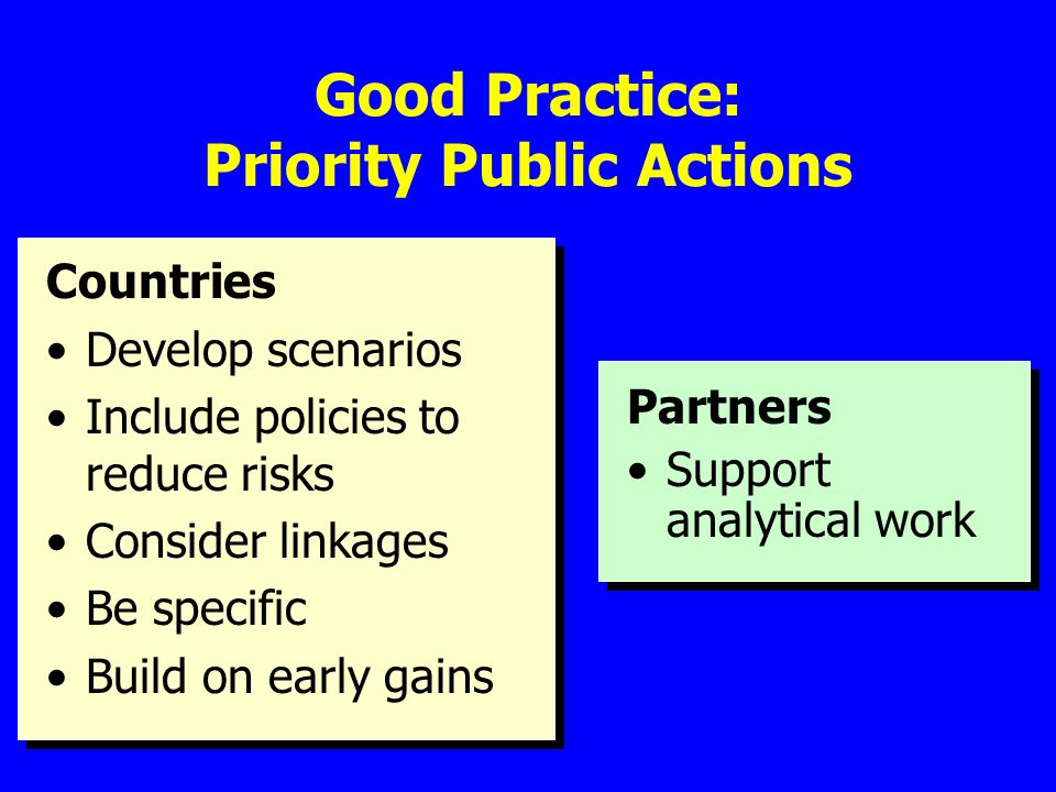 Good Practice: Priority Public Actions Countries Develop scenarios Include policies to reduce risks Consider linkages Be specific Build on early gains Partners Support analytical work