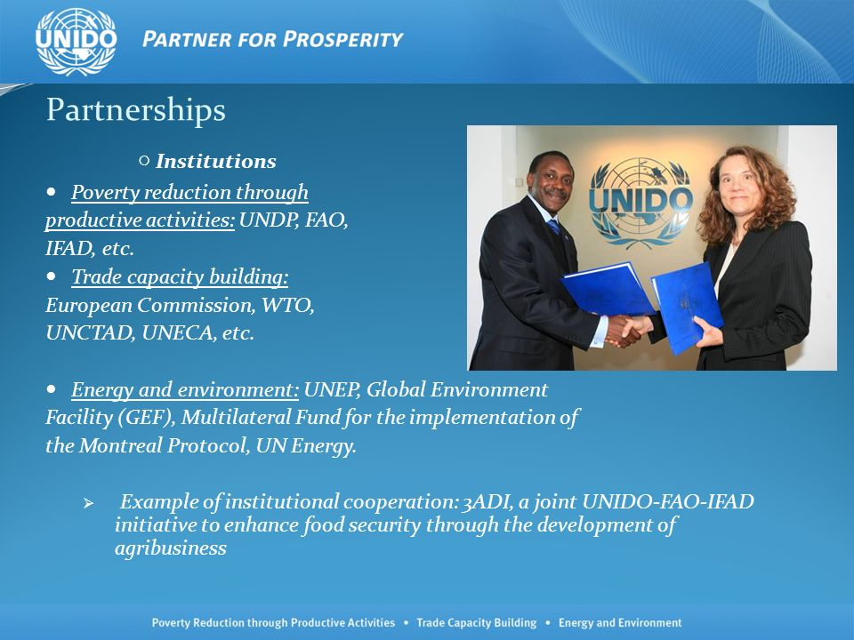 Partnerships Institutions Poverty reduction through productive activities: UNDP, FAO, IFAD, etc.