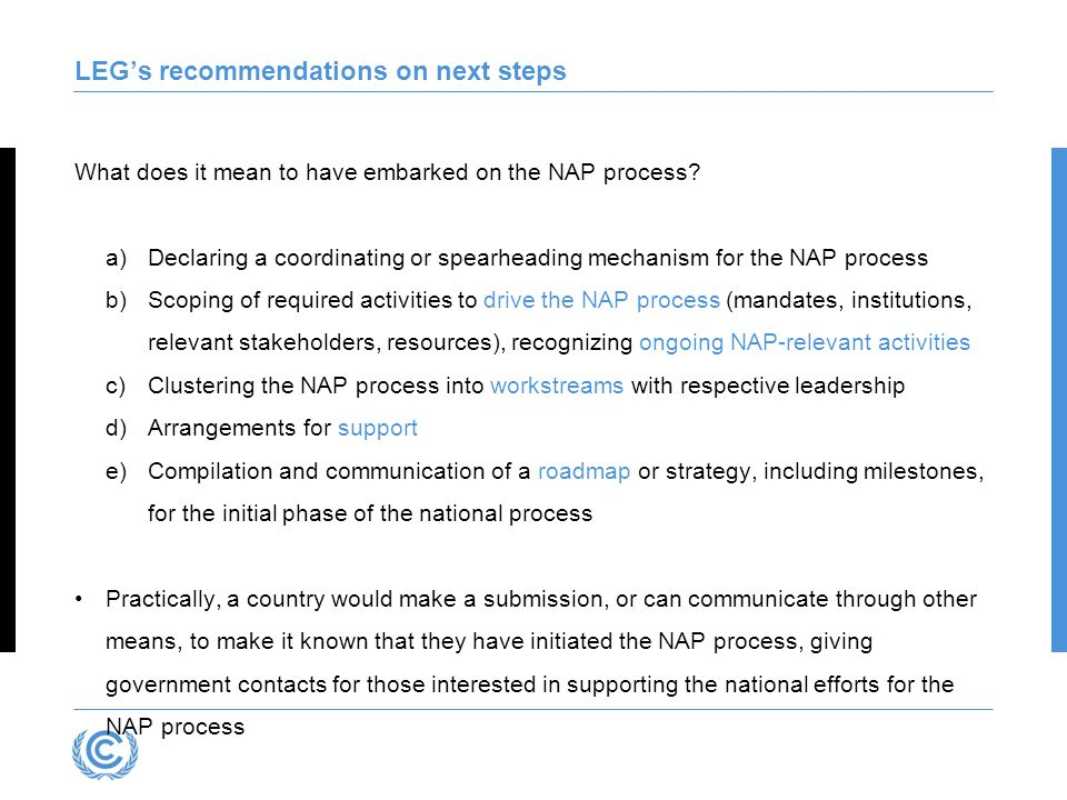 LEGs recommendations on next steps What does it mean to have embarked on the NAP process? a)Declaring a coordinating or spearheading mechanism for the
