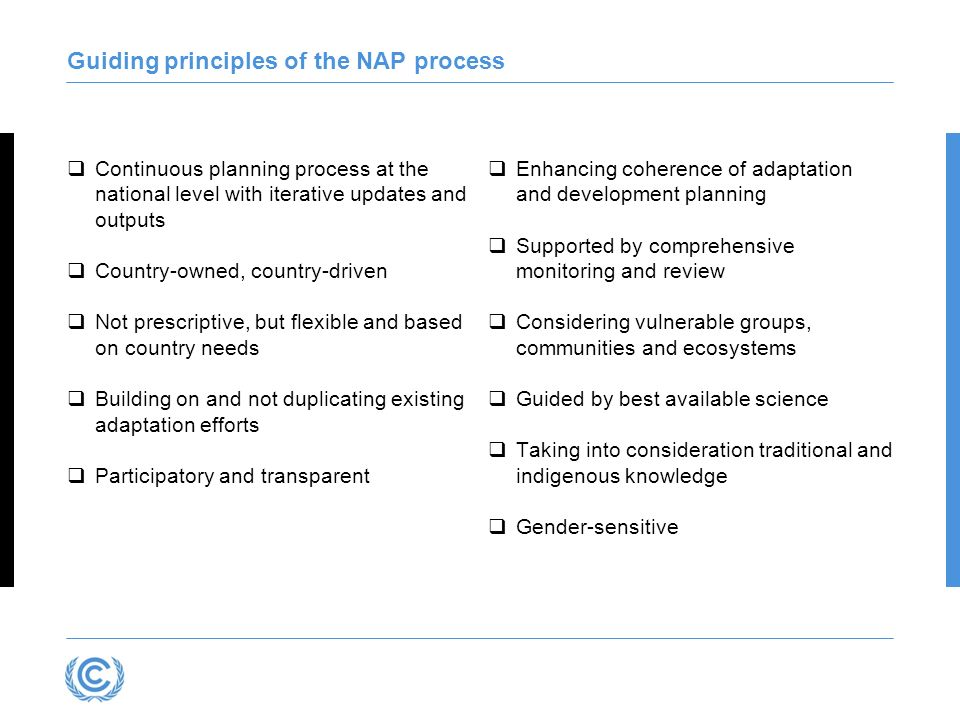 Guiding principles of the NAP process Continuous planning process at the national level with iterative updates and outputs Country-owned, country-driv