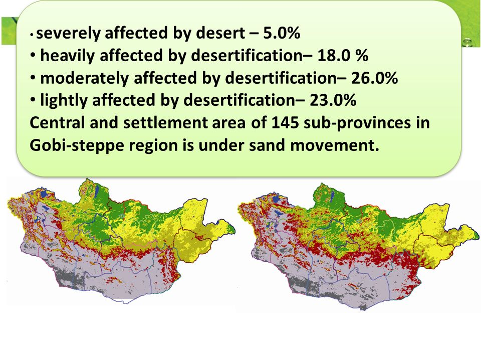 severely affected by desert – 5.0% heavily affected by desertification– 18.0 % moderately affected by desertification– 26.0% lightly affected by desertification– 23.0% Central and settlement area of 145 sub-provinces in Gobi-steppe region is under sand movement.