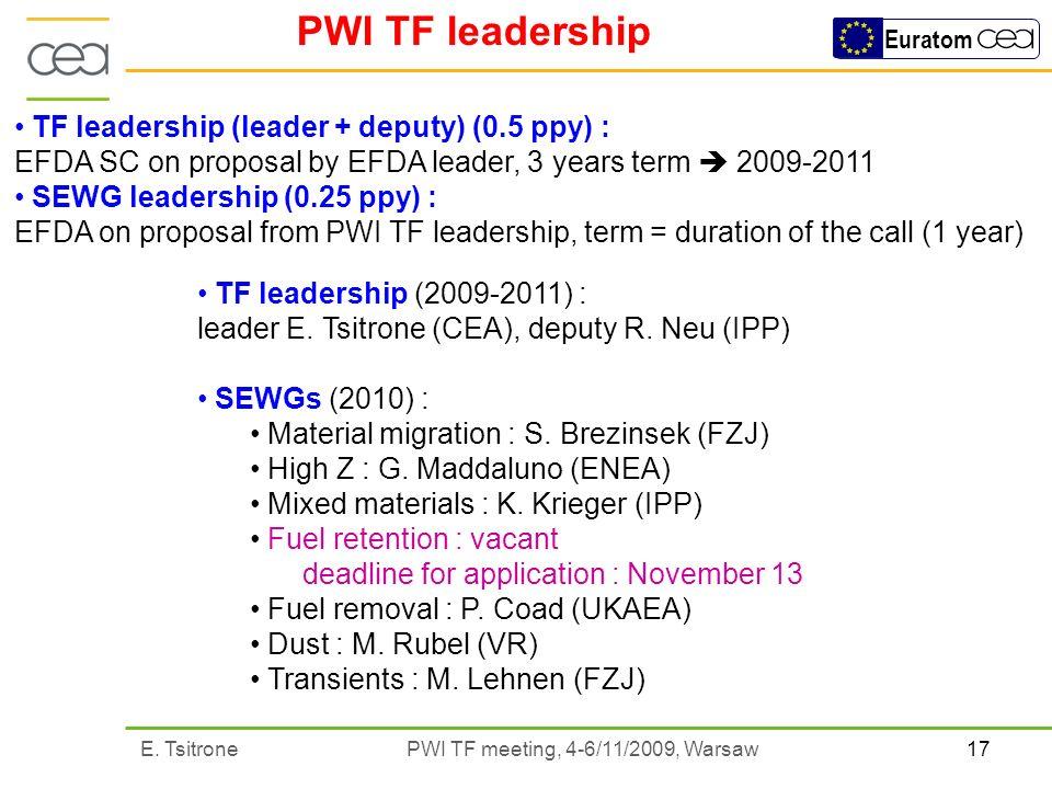 17E. Tsitrone PWI TF meeting, 4-6/11/2009, Warsaw Euratom PWI TF leadership TF leadership (2009-2011) : leader E. Tsitrone (CEA), deputy R. Neu (IPP)