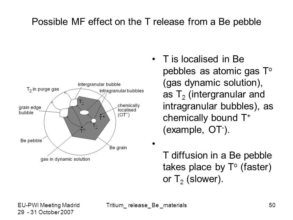 EU-PWI Meeting Madrid 29 - 31 October 2007 Tritium_ release_ Be _materials50 Possible MF effect on the T release from a Be pebble T is localised in Be pebbles as atomic gas T o (gas dynamic solution), as T 2 (intergranular and intragranular bubbles), as chemically bound T + (example, OT - ).