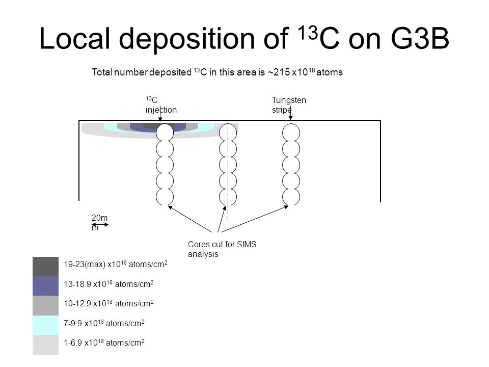 Local deposition of 13 C on G3B 19-23(max) x10 18 atoms/cm 2 13-18.9 x10 18 atoms/cm 2 10-12.9 x10 18 atoms/cm 2 7-9.9 x10 18 atoms/cm 2 1-6.9 x10 18