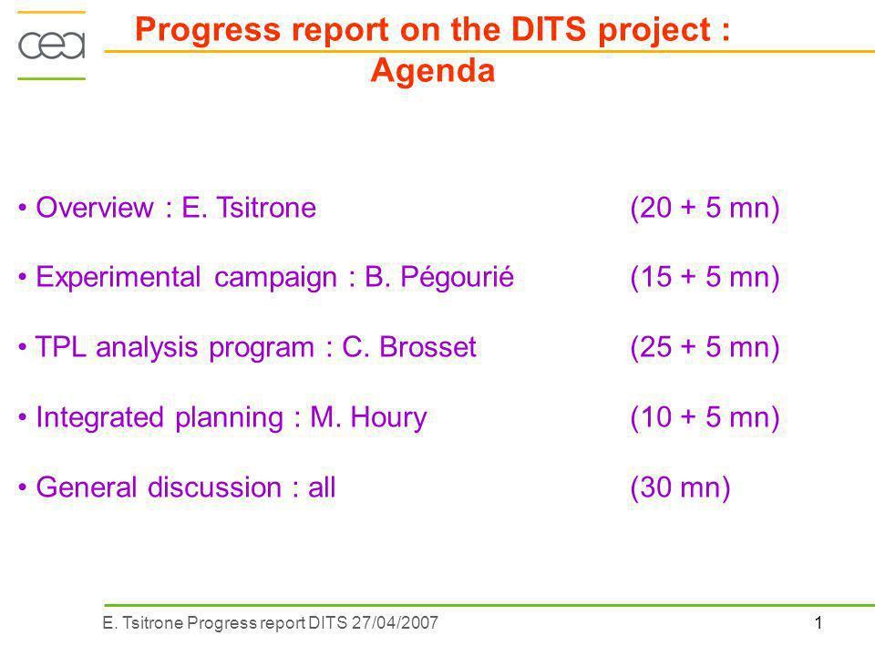 1E. Tsitrone Progress report DITS 27/04/2007 Overview : E.