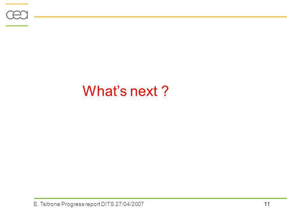 11E. Tsitrone Progress report DITS 27/04/2007 Whats next