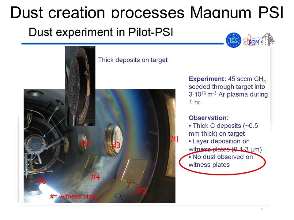 Dust creation processes Magnum PSI