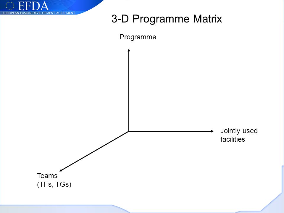 Programme Jointly used facilities Teams (TFs, TGs) 3-D Programme Matrix