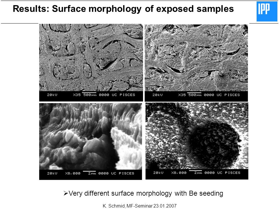 K. Schmid, MF-Seminar 23.01.2007 Results: Surface morphology of exposed samples Very different surface morphology with Be seeding