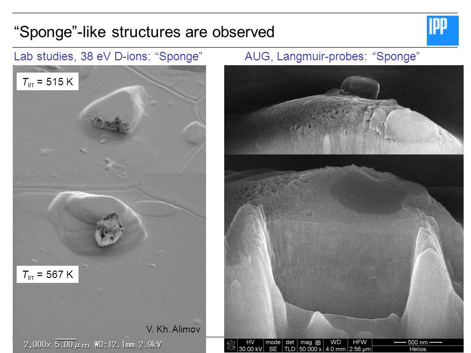 SEWG Fuel Retention July 2008 © Matej Mayer T irr = 515 K T irr = 567 K Lab studies, 38 eV D-ions: SpongeAUG, Langmuir-probes: Sponge Sponge-like structures are observed V.