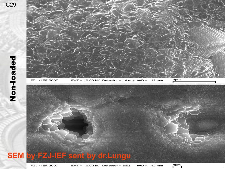 TC29 Non-loaded SEM by FZJ-IEF sent by dr.Lungu