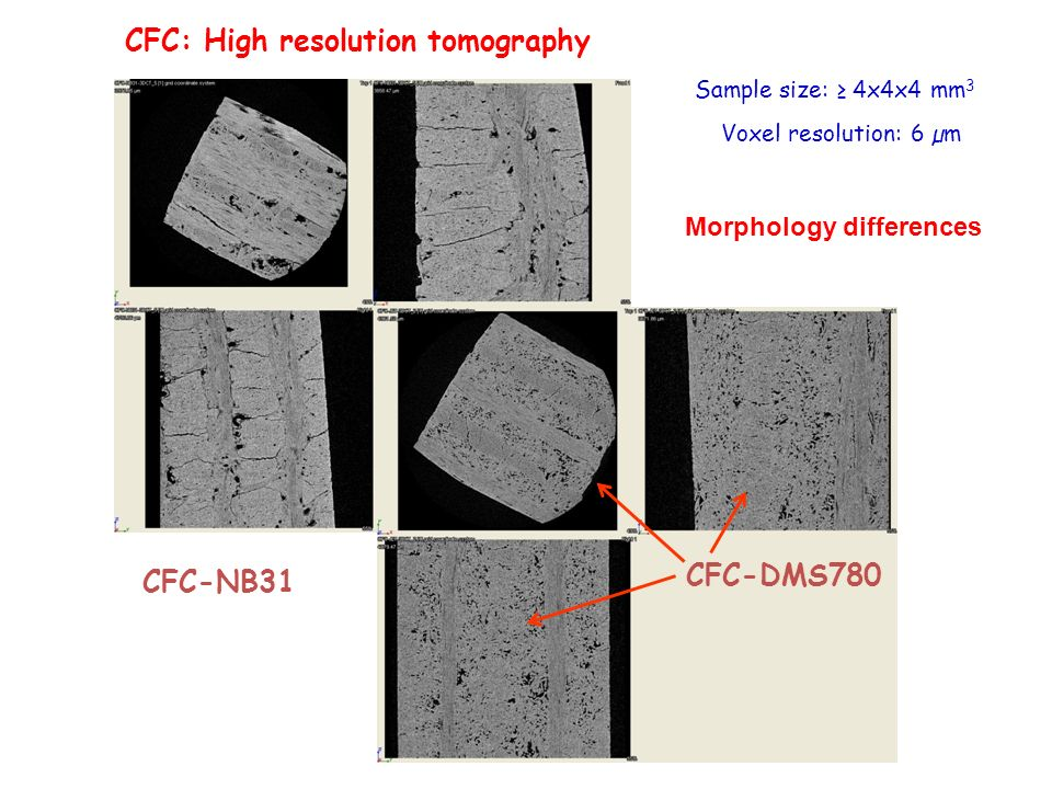 CFC: High resolution tomography Sample size: 4x4x4 mm 3 Voxel resolution: 6 µm CFC-NB31 CFC-DMS780 Morphology differences