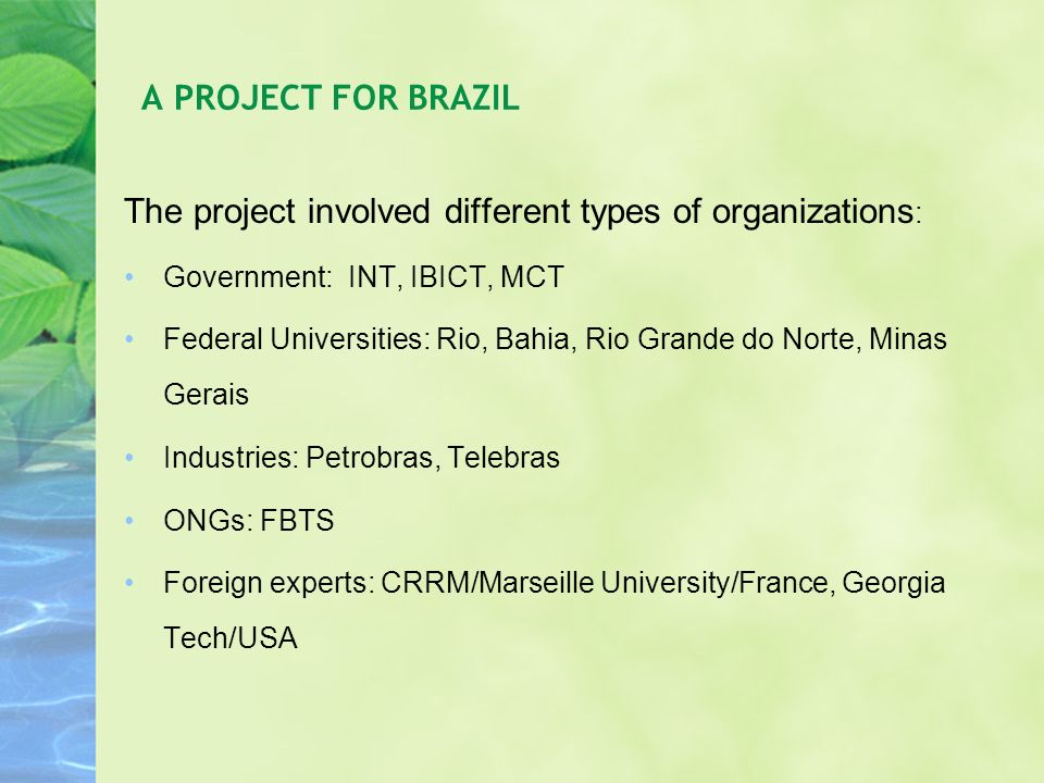 The project involved different types of organizations : Government: INT, IBICT, MCT Federal Universities: Rio, Bahia, Rio Grande do Norte, Minas Gerai