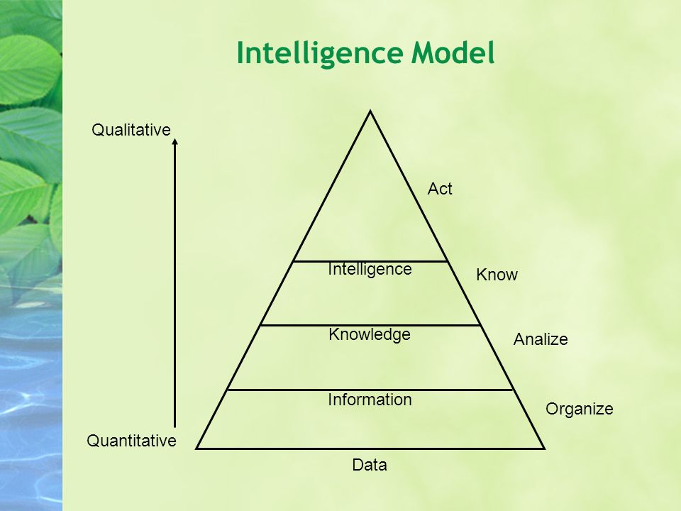 Present knowledge Information Future knowledge (tacit) Past knowledge (explicit) Data Knowledge sharing Intelligence Model