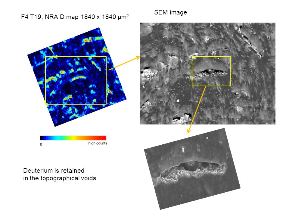 Deuterium is retained in the topographical voids F4 T19, NRA D map 1840 x 1840 µm 2 SEM image
