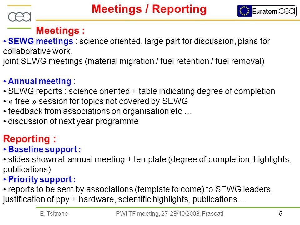 5E. Tsitrone PWI TF meeting, 27-29/10/2008, Frascati Euratom Meetings / Reporting Meetings : SEWG meetings : science oriented, large part for discussi