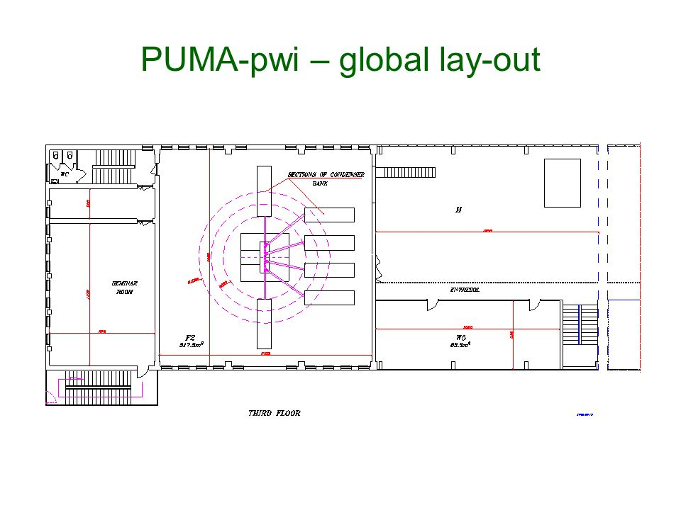 PUMA-pwi – global lay-out