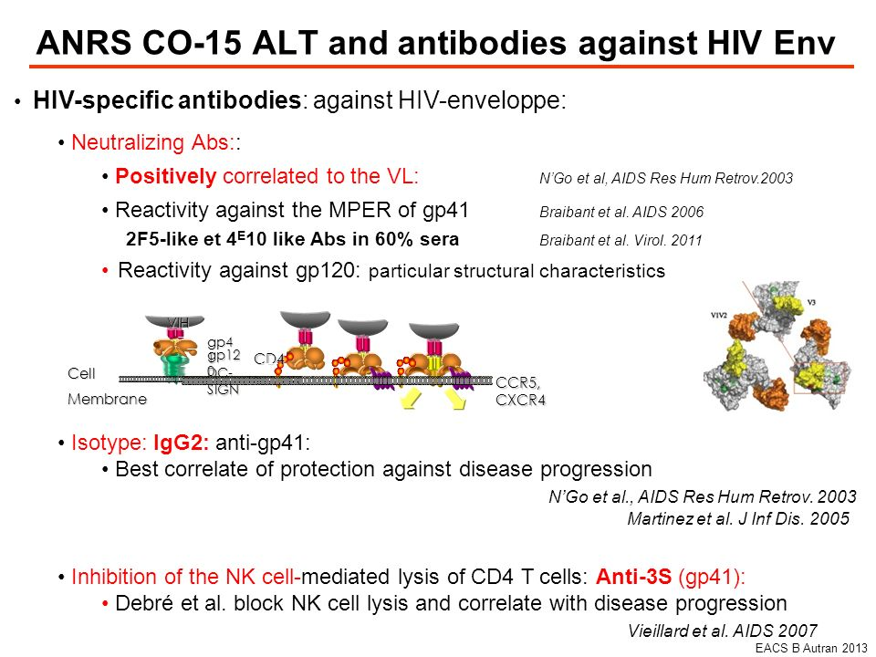 ANRS CO-15 ALT and antibodies against HIV Env HIV-specific antibodies: against HIV-enveloppe: Neutralizing Abs:: Positively correlated to the VL: NGo