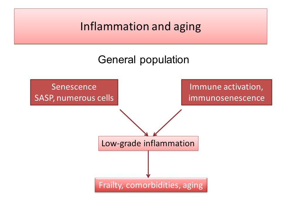 Inflammation and aging General population Senescence SASP, numerous cells Immune activation, immunosenescence Low-grade inflammation Frailty, comorbid