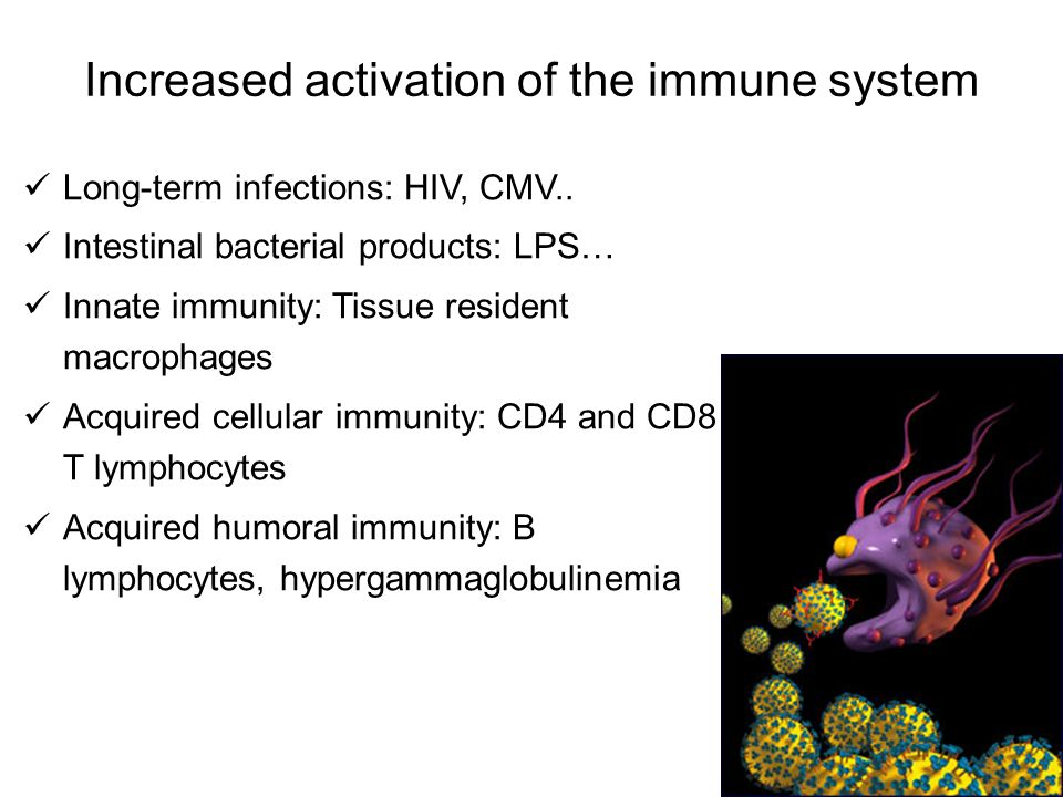 Increased activation of the immune system Long-term infections: HIV, CMV.. Intestinal bacterial products: LPS… Innate immunity: Tissue resident macrop