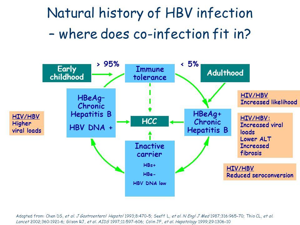 Adapted from: Chen DS, et al. J Gastroenterol Hepatol 1993;8:470–5; Seeff L, et al. N Engl J Med 1987;316:965–70; Thio CL, et al. Lancet 2002;360:1921