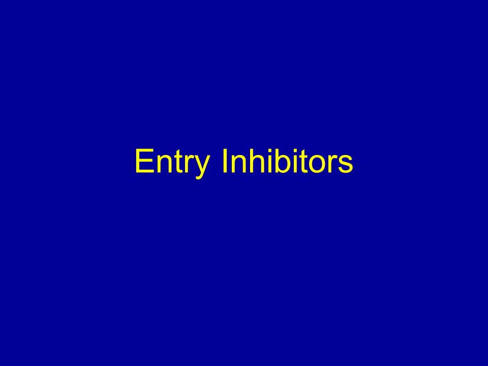 Entry Inhibitors