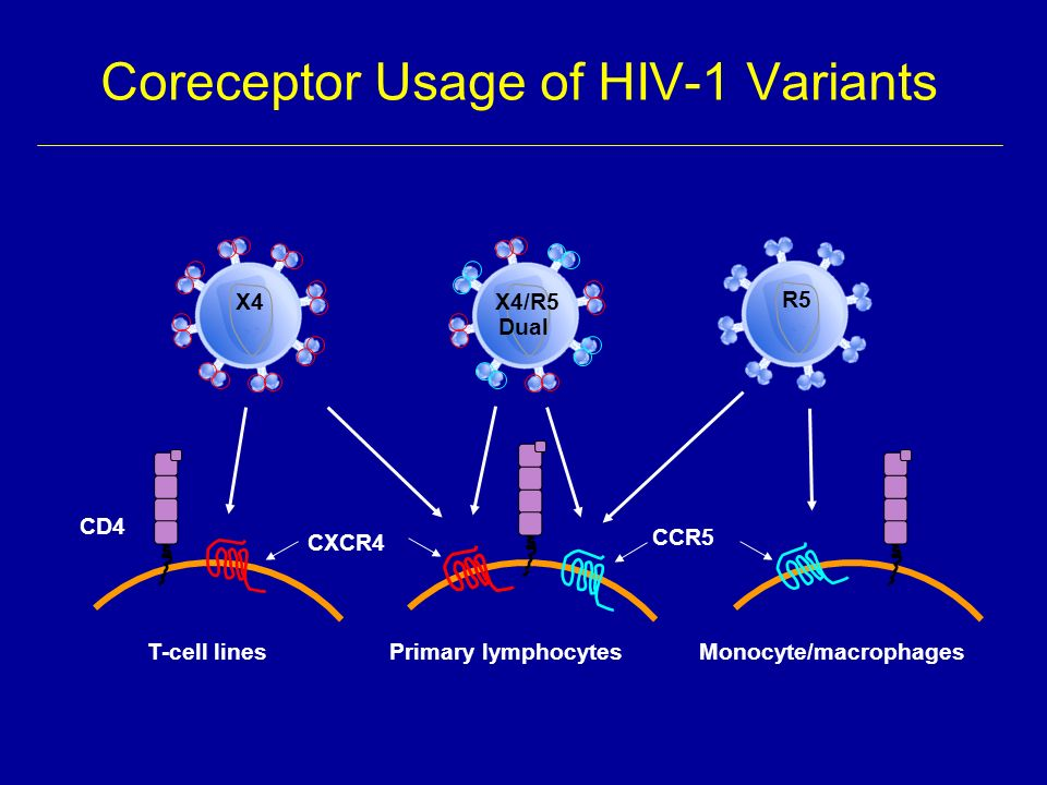 Coreceptor Usage of HIV-1 Variants CXCR4 CCR5 CD4 T-cell lines Primary lymphocytesMonocyte/macrophages R5X4X4/R5 Dual
