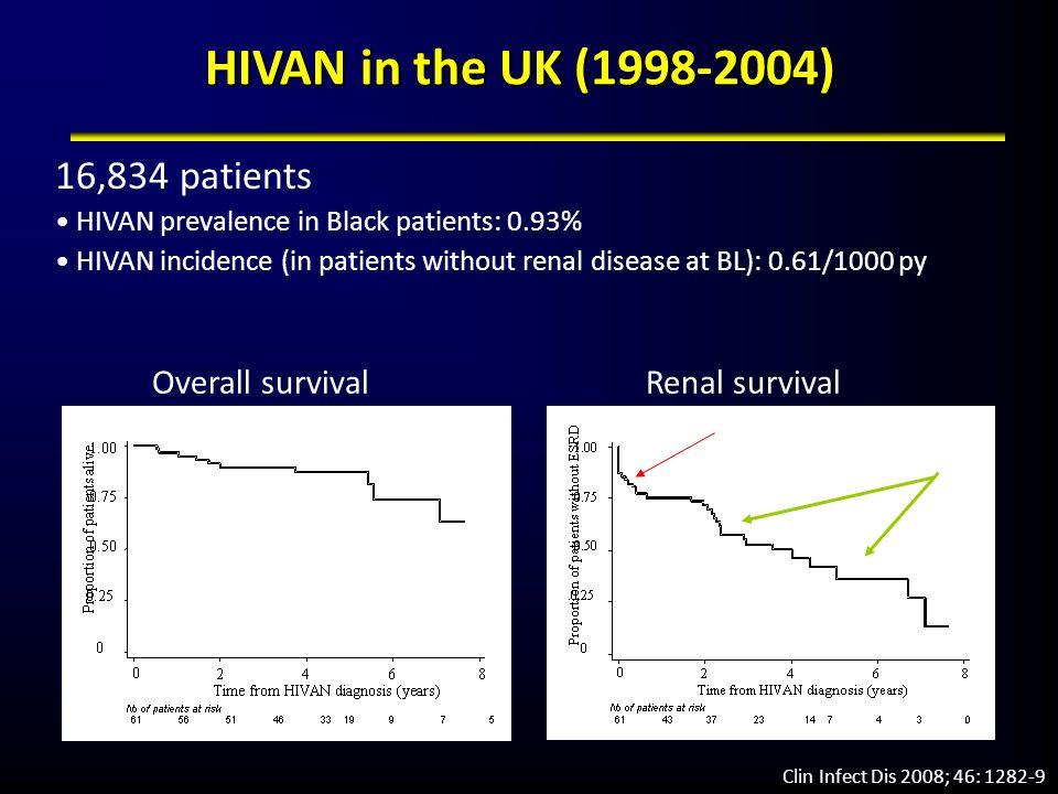 HIVAN in the UK (1998-2004) 16,834 patients HIVAN prevalence in Black patients: 0.93% HIVAN incidence (in patients without renal disease at BL): 0.61/