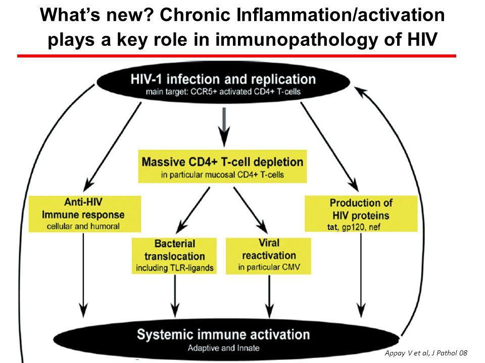 Whats new? Chronic Inflammation/activation plays a key role in immunopathology of HIV tat, Appay V et al, J Pathol 08