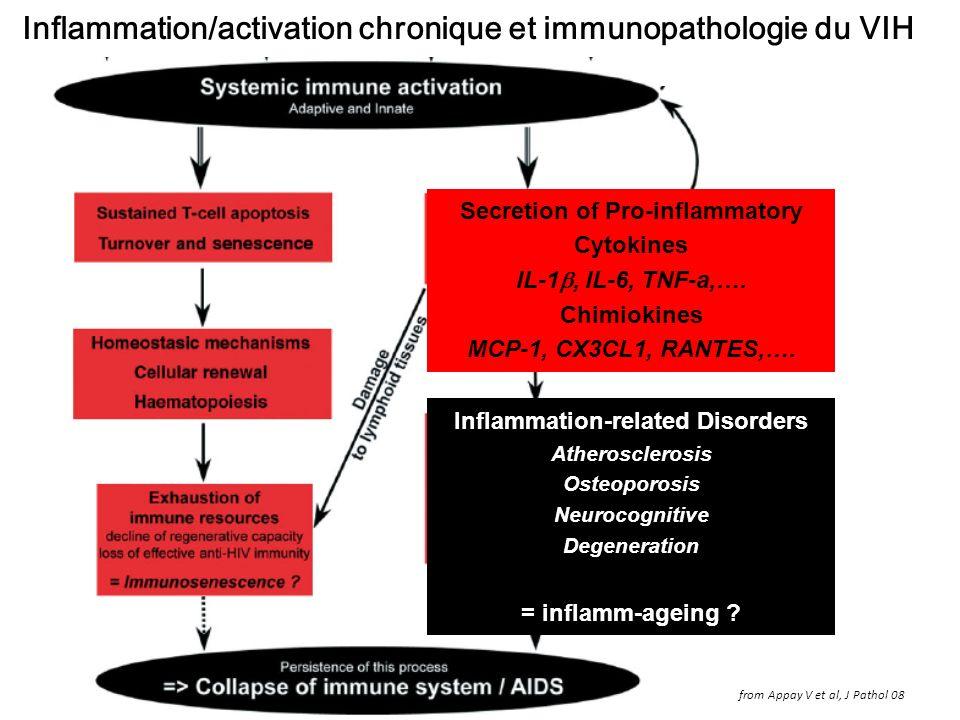 Inflammation/activation chronique et immunopathologie du VIH from Appay V et al, J Pathol 08 Secretion of Pro-inflammatory Cytokines IL-1, IL-6, TNF-a