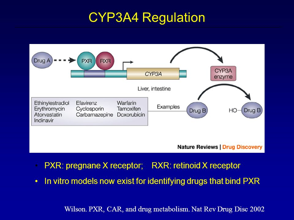 Wilson. PXR, CAR, and drug metabolism.