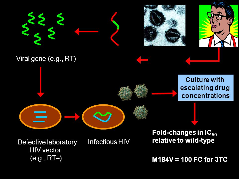 Plasma HIV RNA PCR Defective laboratory HIV vector (e.g., RT _ ) Infectious HIV Culture with escalating drug concentrations Fold-changes in IC 50 relative to wild-type M184V = 100 FC for 3TC Viral gene (e.g., RT)