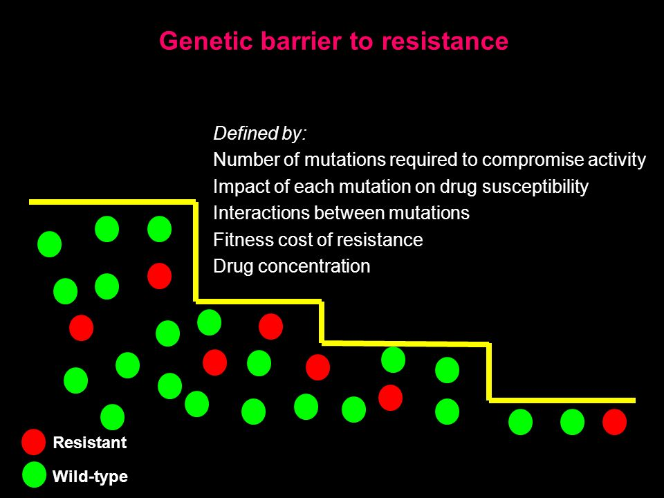 Genetic barrier to resistance Defined by: Number of mutations required to compromise activity Impact of each mutation on drug susceptibility Interactions between mutations Fitness cost of resistance Drug concentration Resistant Wild-type