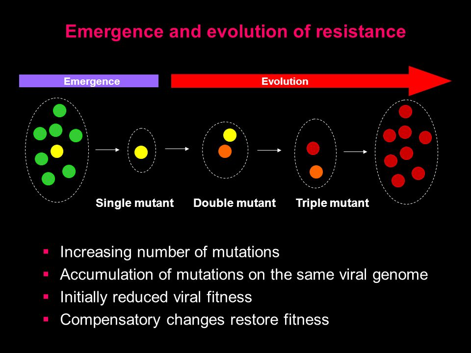 Emergence and evolution of resistance Increasing number of mutations Accumulation of mutations on the same viral genome Initially reduced viral fitness Compensatory changes restore fitness EvolutionEmergence Single mutant Double mutant Triple mutant