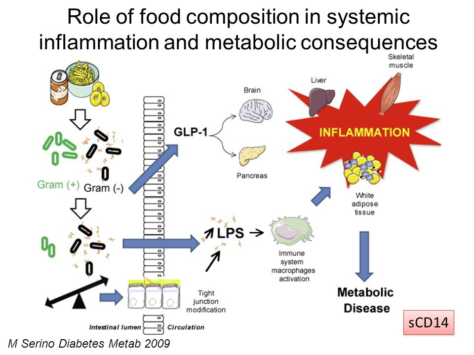M Serino Diabetes Metab 2009 Role of food composition in systemic inflammation and metabolic consequences sCD14