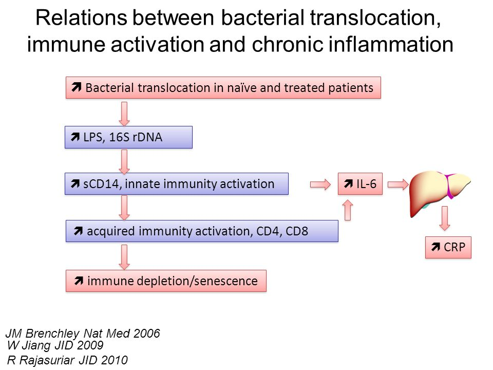 Bacterial translocation in naïve and treated patients LPS, 16S rDNA sCD14, innate immunity activation acquired immunity activation, CD4, CD8 immune de