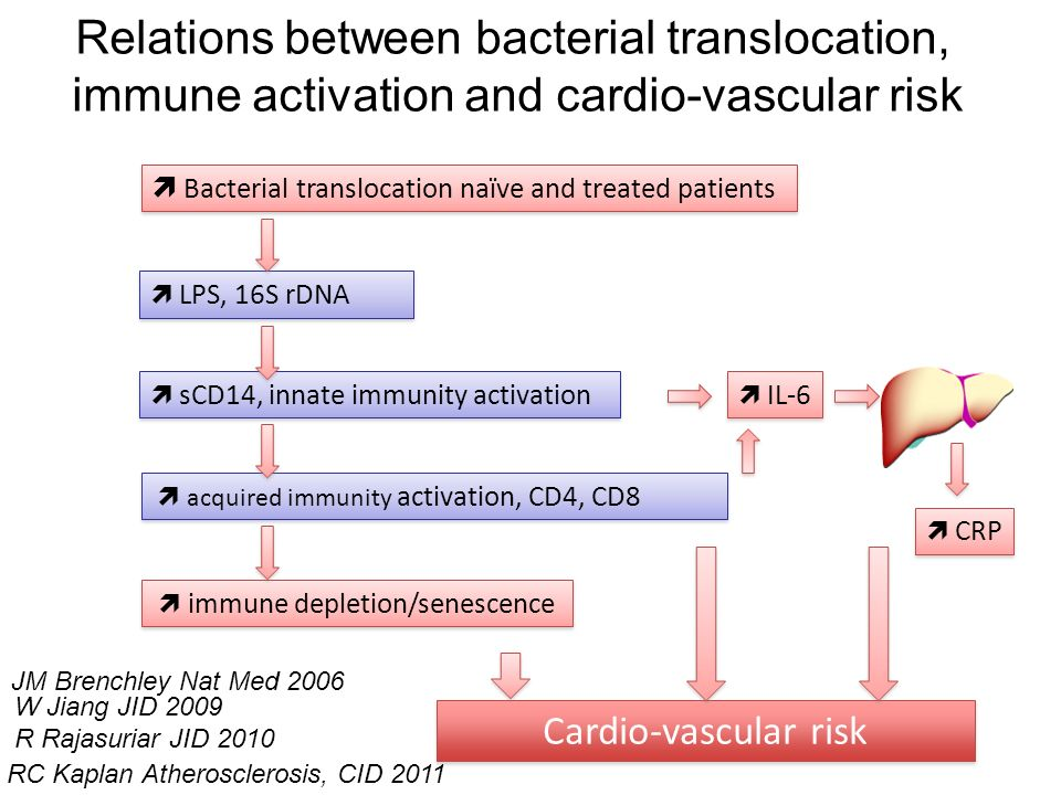 Bacterial translocation naïve and treated patients LPS, 16S rDNA sCD14, innate immunity activation acquired immunity activation, CD4, CD8 immune deple