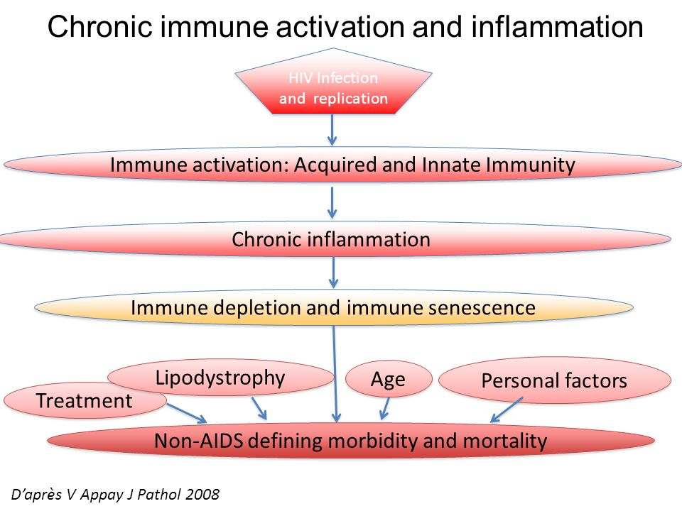 Chronic immune activation and inflammation HIV Infection and replication Immune activation: Acquired and Innate Immunity Immune depletion and immune s