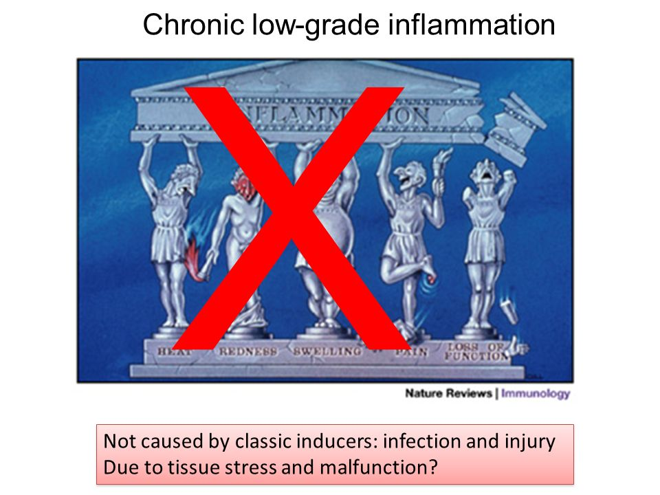 Chronic low-grade inflammation X Not caused by classic inducers: infection and injury Due to tissue stress and malfunction? Not caused by classic indu